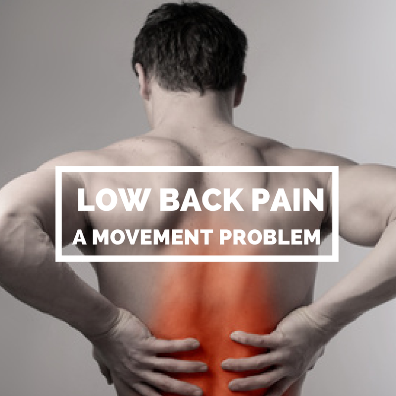 Low Back Pain – A Movement Problem